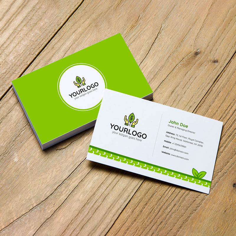 Economy Business Cards
